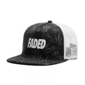 Cayler & Sons Faded Snapback